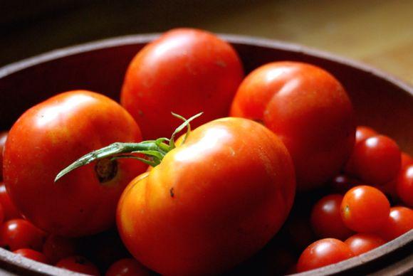 My Neighbors Tomatoes = Gazpacho