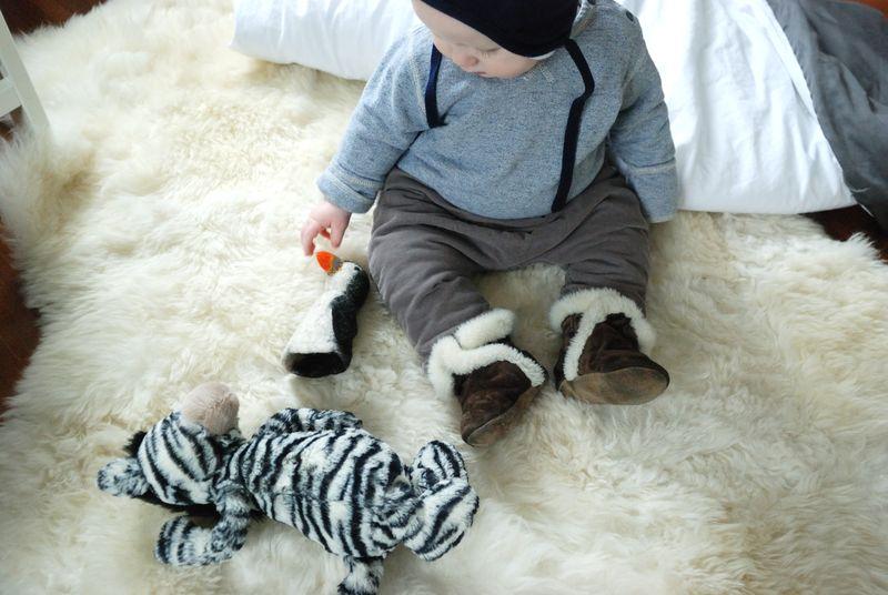 Penguinzebra
