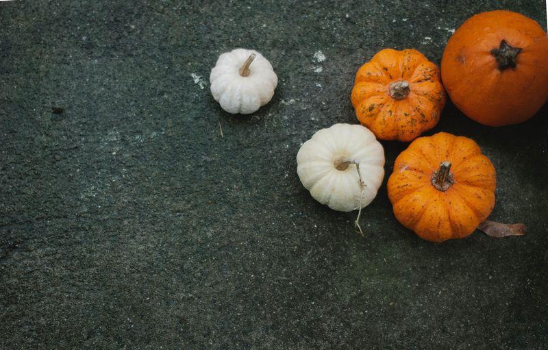 Pumpkins-0205